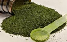Algae Shown to Improve Gastrointestinal Health